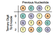 Huffman-DNA