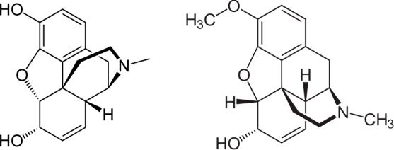 morfinacodeina