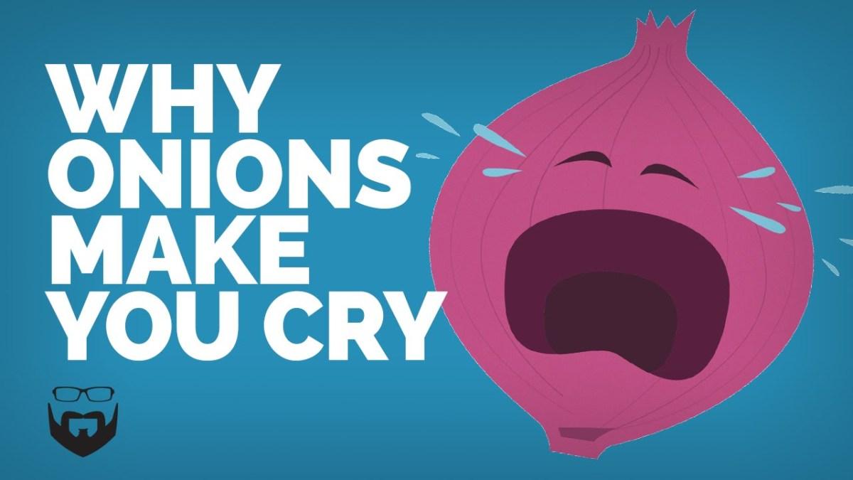 Por que cebolas nos fazem chorar?